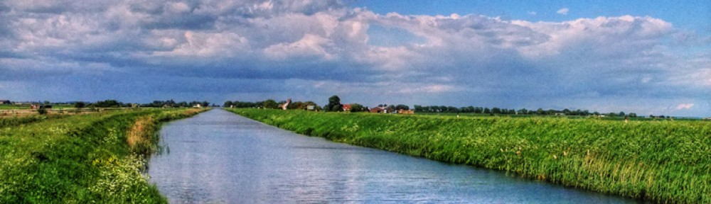 Ouse Washes: The Heart of the Fens